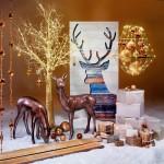 Großer Auftritt zur Weihnachtszeit